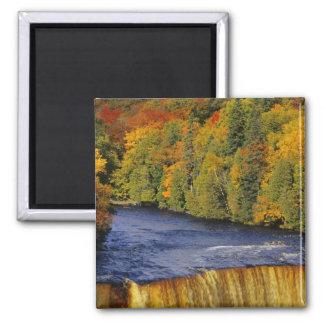 Upper Tahquamenon Falls in UP Michigan in Fridge Magnets