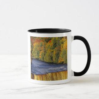 Upper Tahquamenon Falls in UP Michigan in Mug
