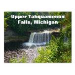 Upper Tahquamenon Falls, Michigan Postcard