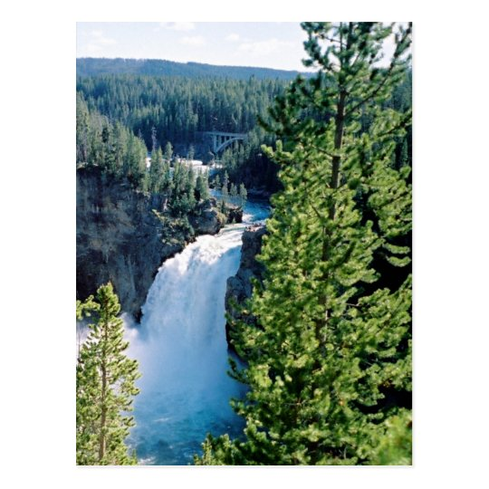 Upper Yellowstone Falls Postcard