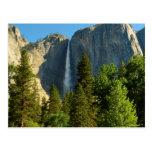 Upper Yosemite Falls, Merced River, Yosemite Postcard