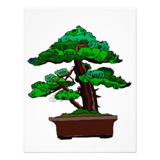 Upright Bonsai Old in Rectangle Brown Pot Invitations