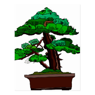 Upright Bonsai Old in Rectangle Brown Pot Postcard