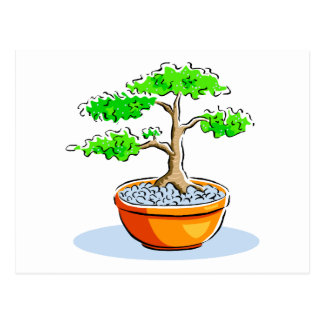 Upright Bonsai Orange Bowl Graphic Image Postcard