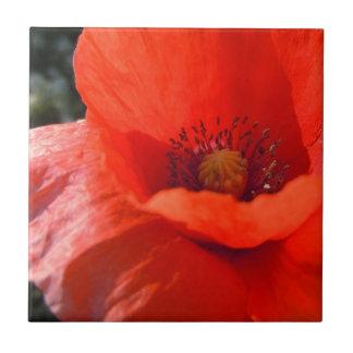 Upright Poppy Tile