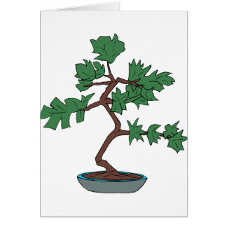 Upright young bonsai graphic greeting cards