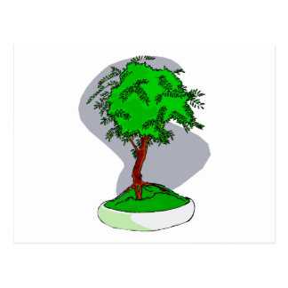 Upright Young Bonsai Graphic Image Design Postcard