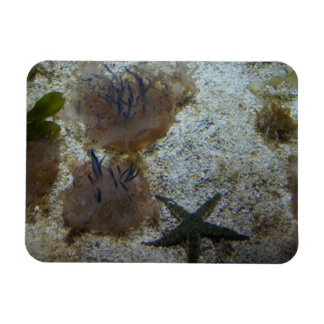 Upside-down Jellyfish Photo Magnet