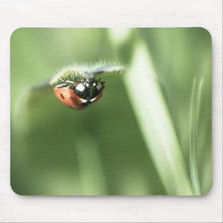Upside down Ladybird Mousepad