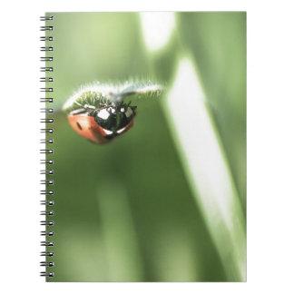 Upside down Ladybird Spiral Notebook