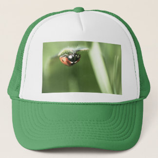 Upside down Ladybird Trucker Hat