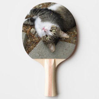 Upside Down Tabby Ping Pong Paddle
