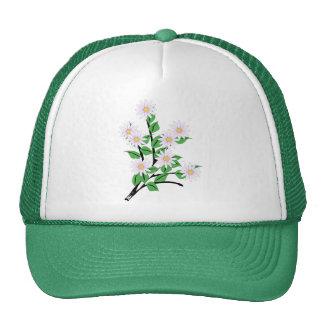 Upsy Daisy Trucker Hats