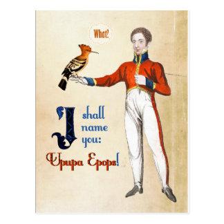 Upupa Epops Postcard