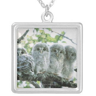 Ural owetsl. Ikeda-machi, Hokkaido, Japan Silver Plated Necklace