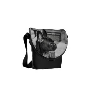 Urban bulldog commuter bag