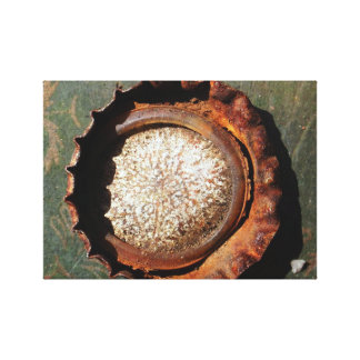 Urban Decay Bottle-Top Photograph printed on canva Canvas Print
