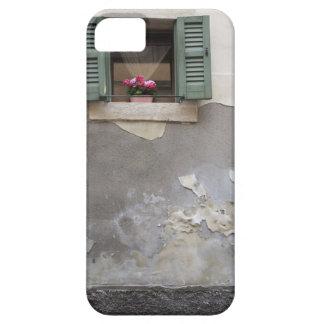 Urban decay iPhone 5 case
