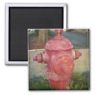 Urban Fire Hydrant Sticker Fridge Magnet