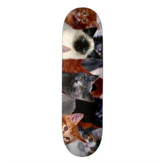 Urban Jungle Cats Custom Pro Park Board Skate Decks