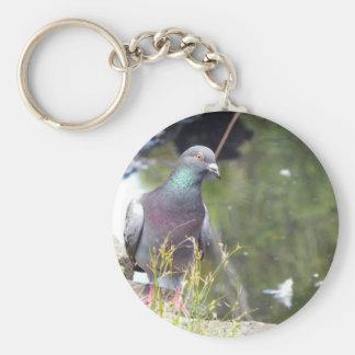 Urban Pigeon Basic Round Button Key Ring