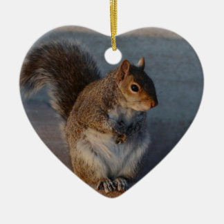 Urban Squirrel. Christmas Ornament