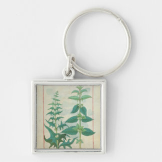 Urticaceae Silver-Colored Square Key Ring