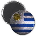 Uruguay Flag Firework Refrigerator Magnet