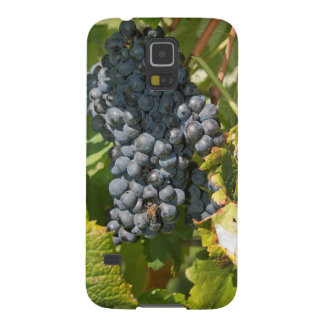 Uruguay, Montevideo, Colon Area. Bodegas Galaxy S5 Case