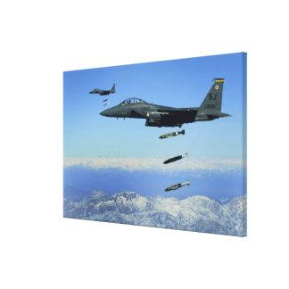 US Air Force F-15E Strike Eagle aircraft Canvas Print