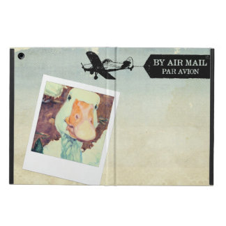 US Air Mail Goose Tan Coloured iPad Air Cover