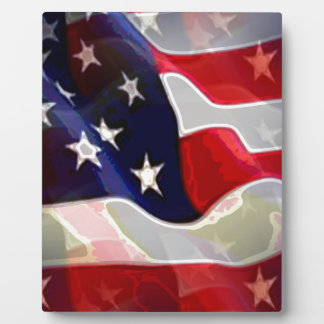 US American Flag Display Plaque