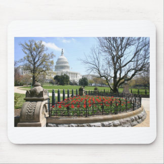 US Capitol building spring Mouse Pad