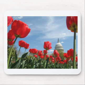 US Capitol Building Spring photo Mouse Pad