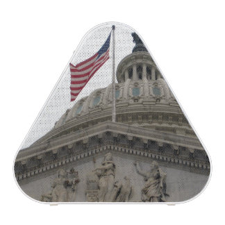 US Capitol Building with American Flag - East
