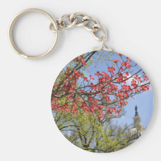 US Capitol spring flower Key Chain