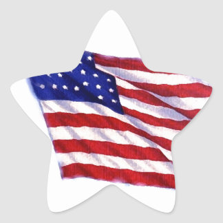 US Flag Star Sticker
