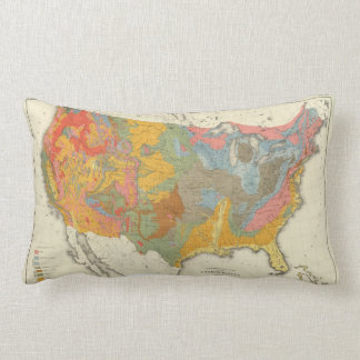US Geological Map Lumbar Cushion