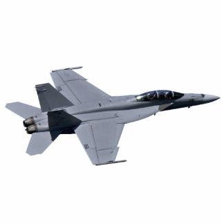 US NAVY F18 Super Hornet Photo Sculpture