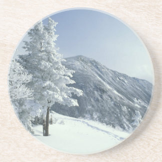 US, NH, Snow covered trees Trails Snoeshoe Coaster