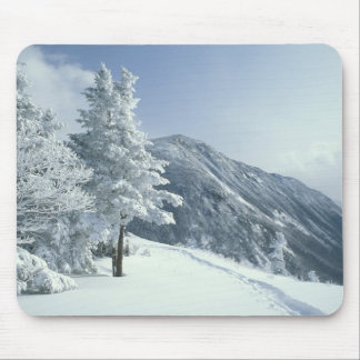 US, NH, Snow covered trees Trails Snoeshoe Mouse Mat