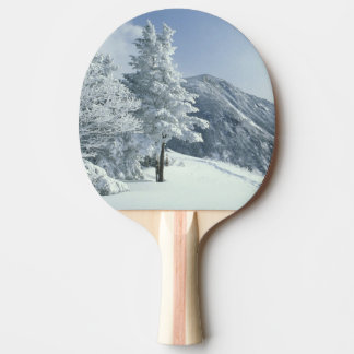 US, NH, Snow covered trees Trails Snoeshoe Ping Pong Paddle