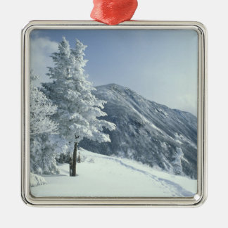 US, NH, Snow covered trees Trails Snoeshoe Silver-Colored Square Decoration