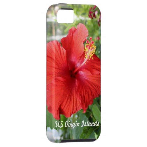 US Virgin Islands iPhone 5 Cases