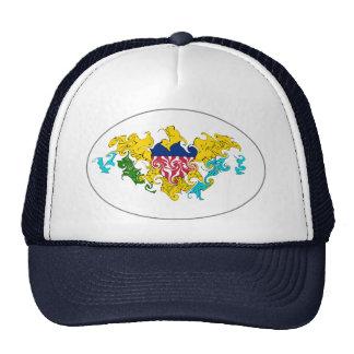 US Virgin Islands Gnarly Flag Hat