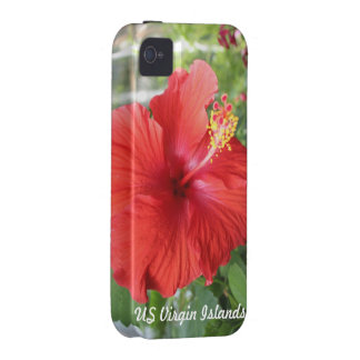 US Virgin Islands iPhone 4 Cover