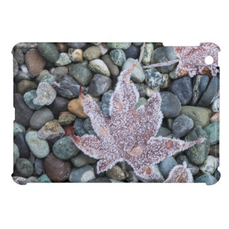 Us, Wa, Bainbridge Island. Early Morning Frost 2 iPad Mini Covers