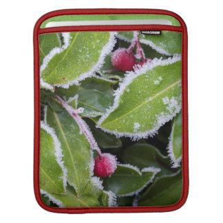 Us, Wa, Bainbridge Island. Early Morning Frost iPad Sleeve