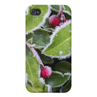 Us, Wa, Bainbridge Island. Early Morning Frost iPhone 4/4S Cover
