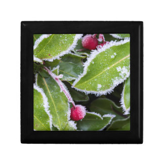 Us, Wa, Bainbridge Island. Early Morning Frost Small Square Gift Box